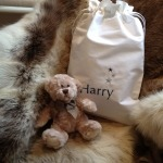 teddy bag1